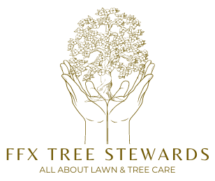FFX Tree Stewards